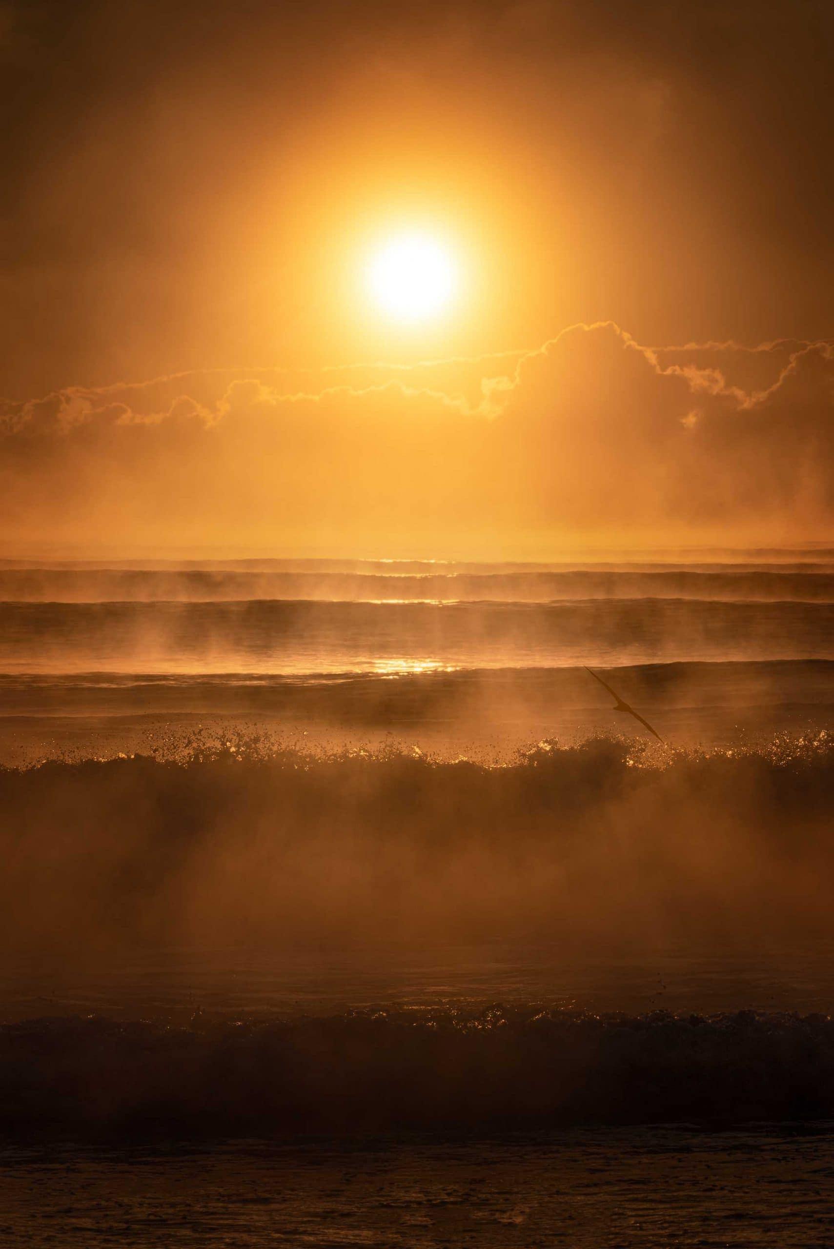 ocean fire dalegphoto